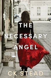 necessary angel ck stead small
